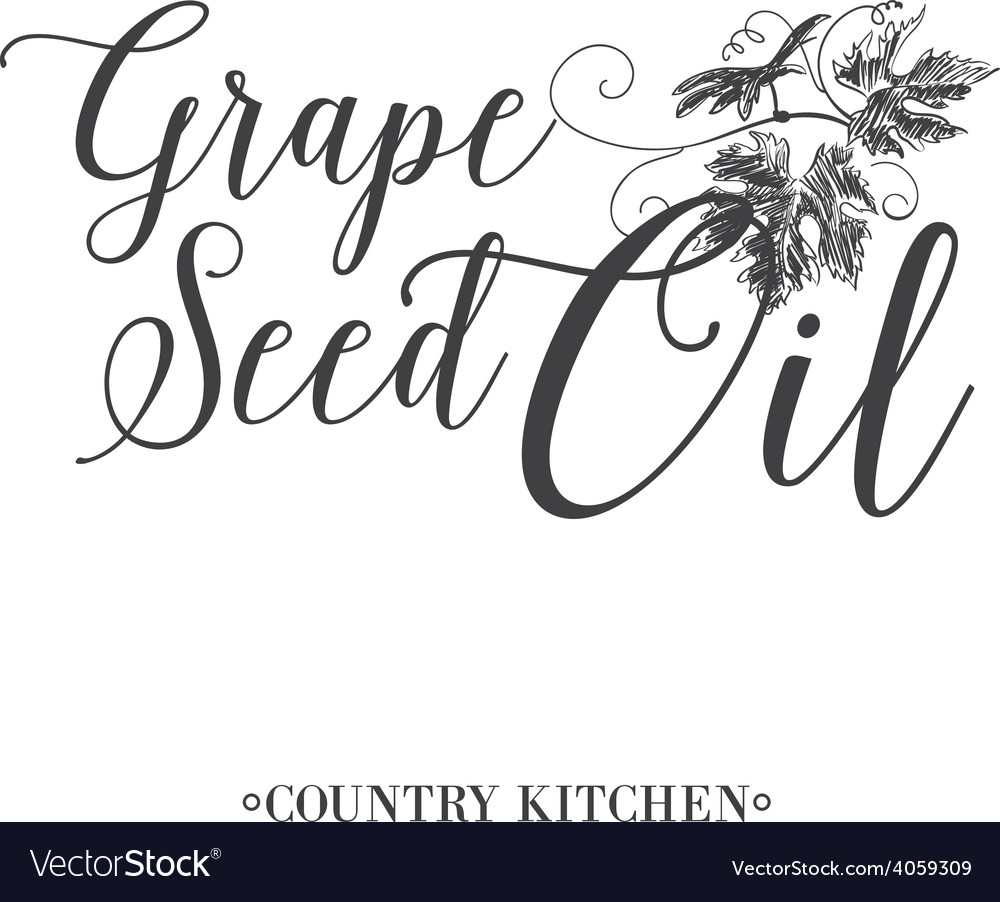 Grape seed oil vector | Price: 1 Credit (USD $1)