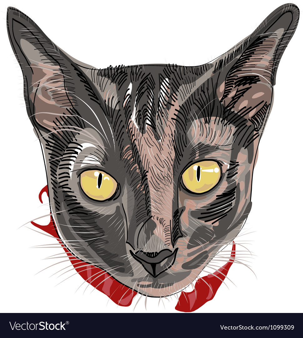 Hand drawn kitty face vector | Price: 1 Credit (USD $1)