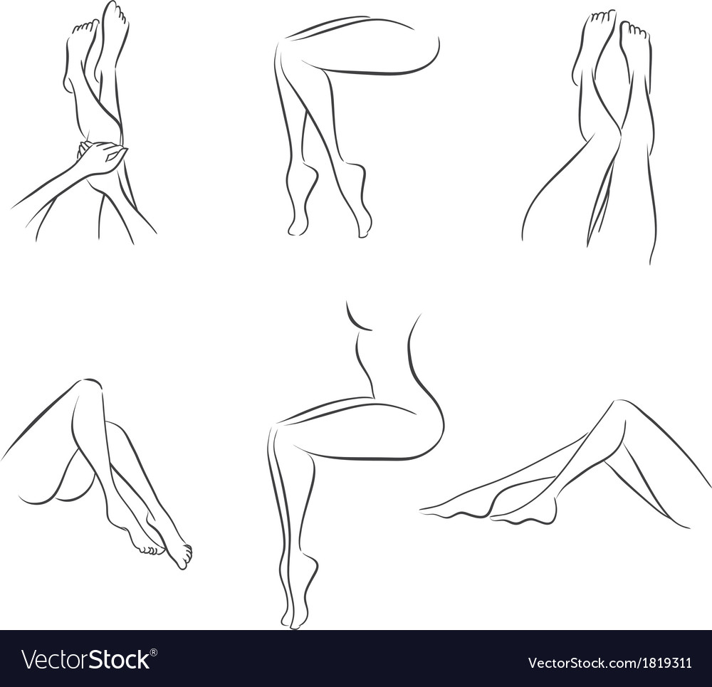 Set of womens legs vector | Price: 1 Credit (USD $1)