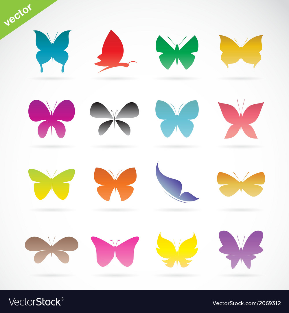 Group of colorful butterfly vector | Price: 1 Credit (USD $1)