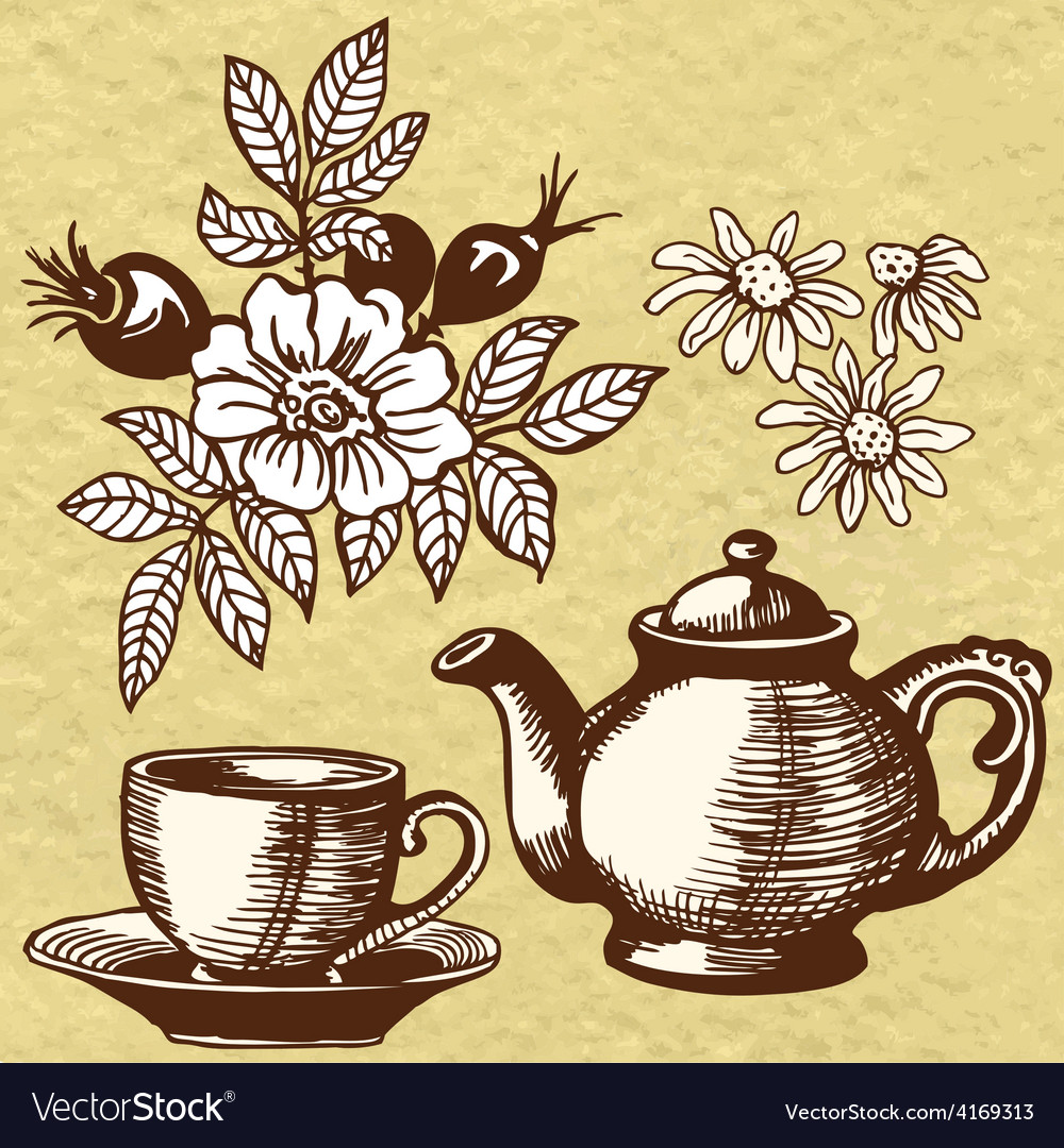 Chamomile tea and rosehip vector | Price: 1 Credit (USD $1)