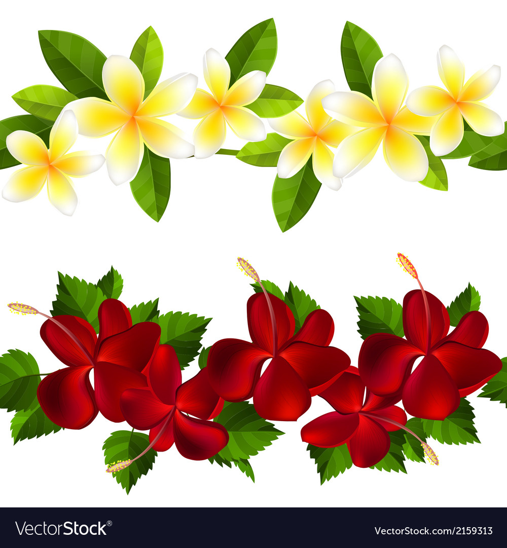 Samless border made of tropical flowers vector | Price: 1 Credit (USD $1)
