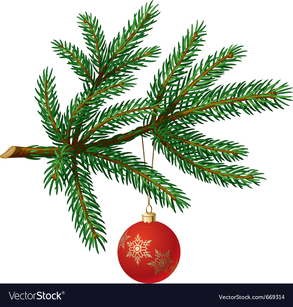 Pine tree branch with christmas ball vector | Price: 1 Credit (USD $1)