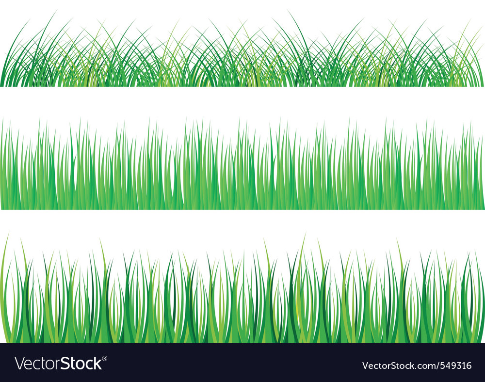 Collection of green grass isolated on white vector | Price: 1 Credit (USD $1)