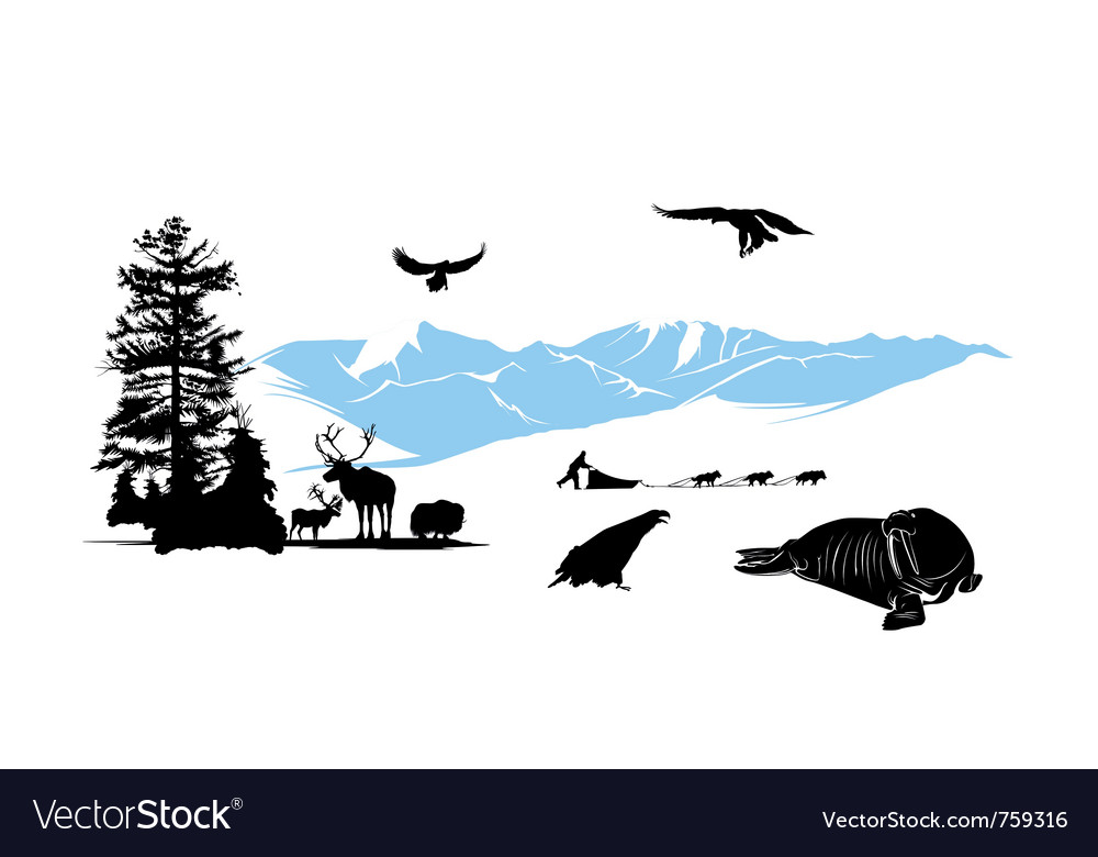 Reservation with winter animals on the snow mounta vector | Price: 3 Credit (USD $3)