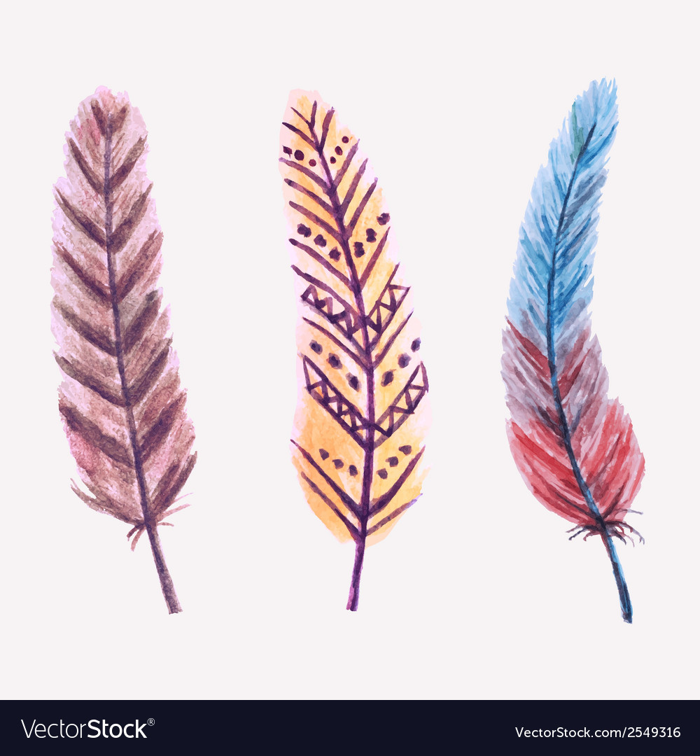 Set of watercolor feathers vector | Price: 1 Credit (USD $1)
