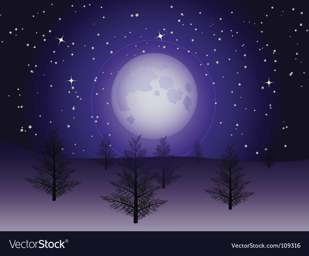 Winter christmas trees vector | Price: 1 Credit (USD $1)