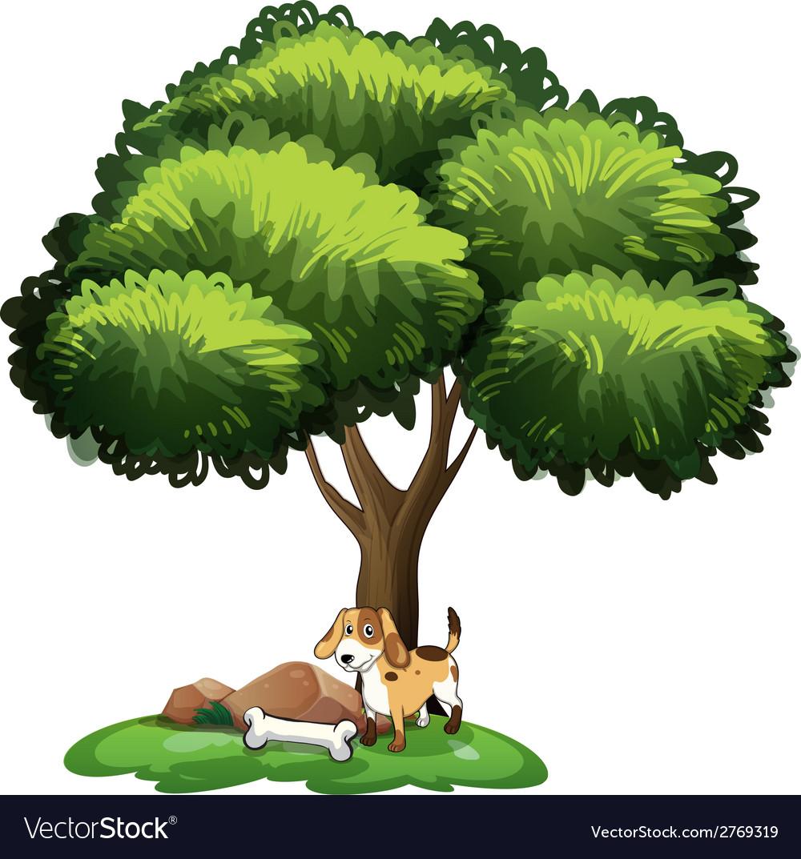 Dog under tree vector | Price: 1 Credit (USD $1)