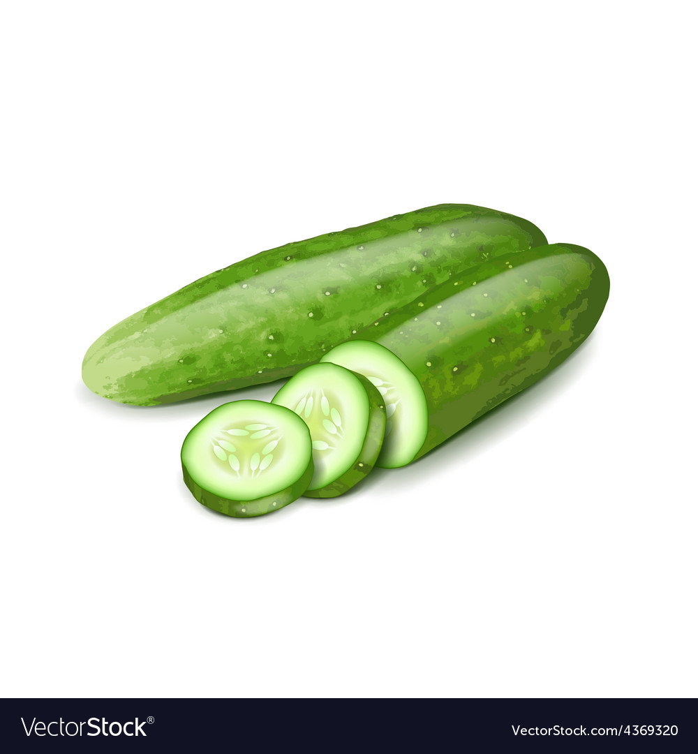 Cucumber and slice isolated on white vector | Price: 3 Credit (USD $3)