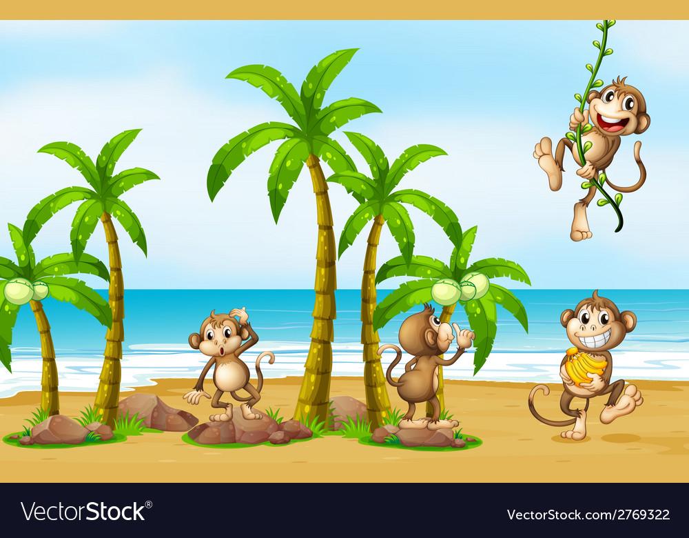 Monkey on beach vector | Price: 3 Credit (USD $3)