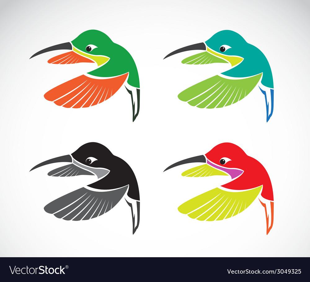 Hummingbird vector   Price: 1 Credit (USD $1)