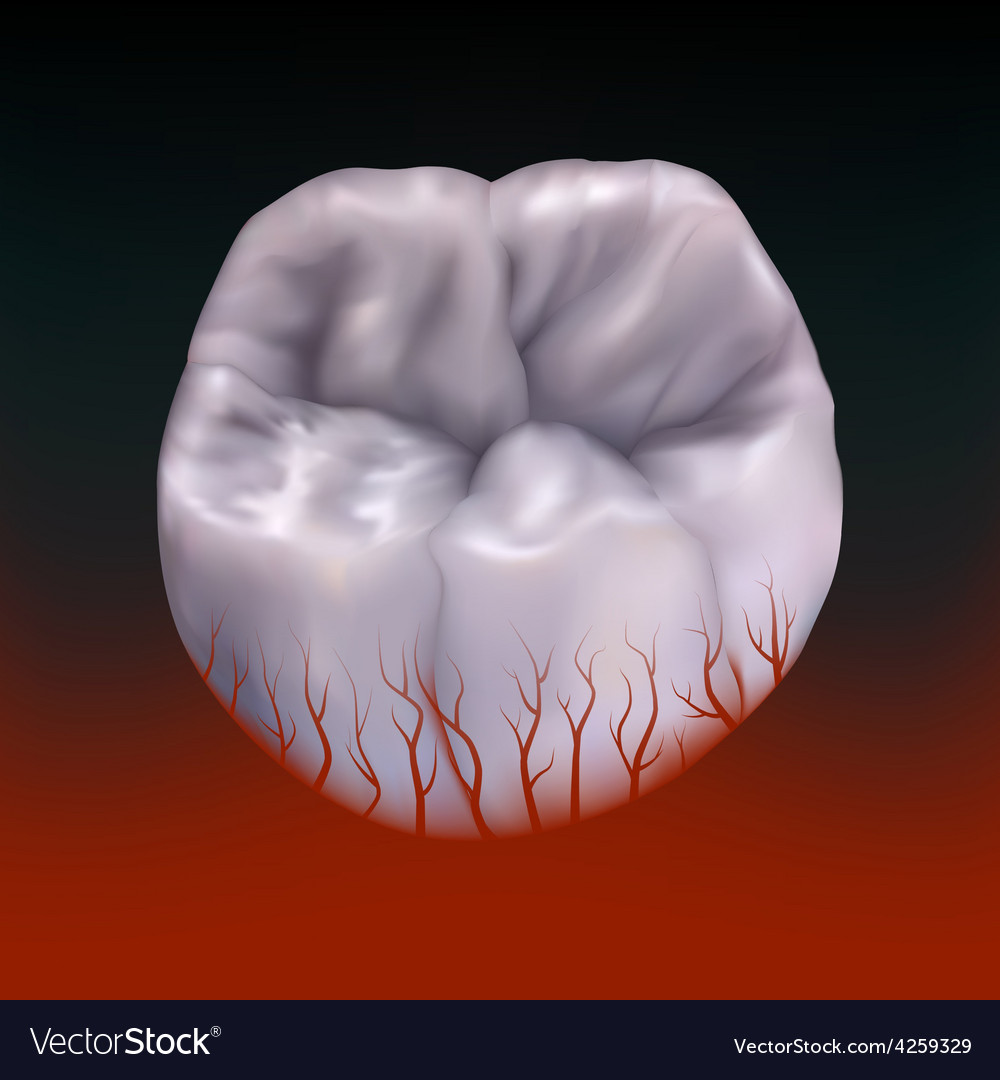 Bloody molar tootheps 10 vector | Price: 1 Credit (USD $1)