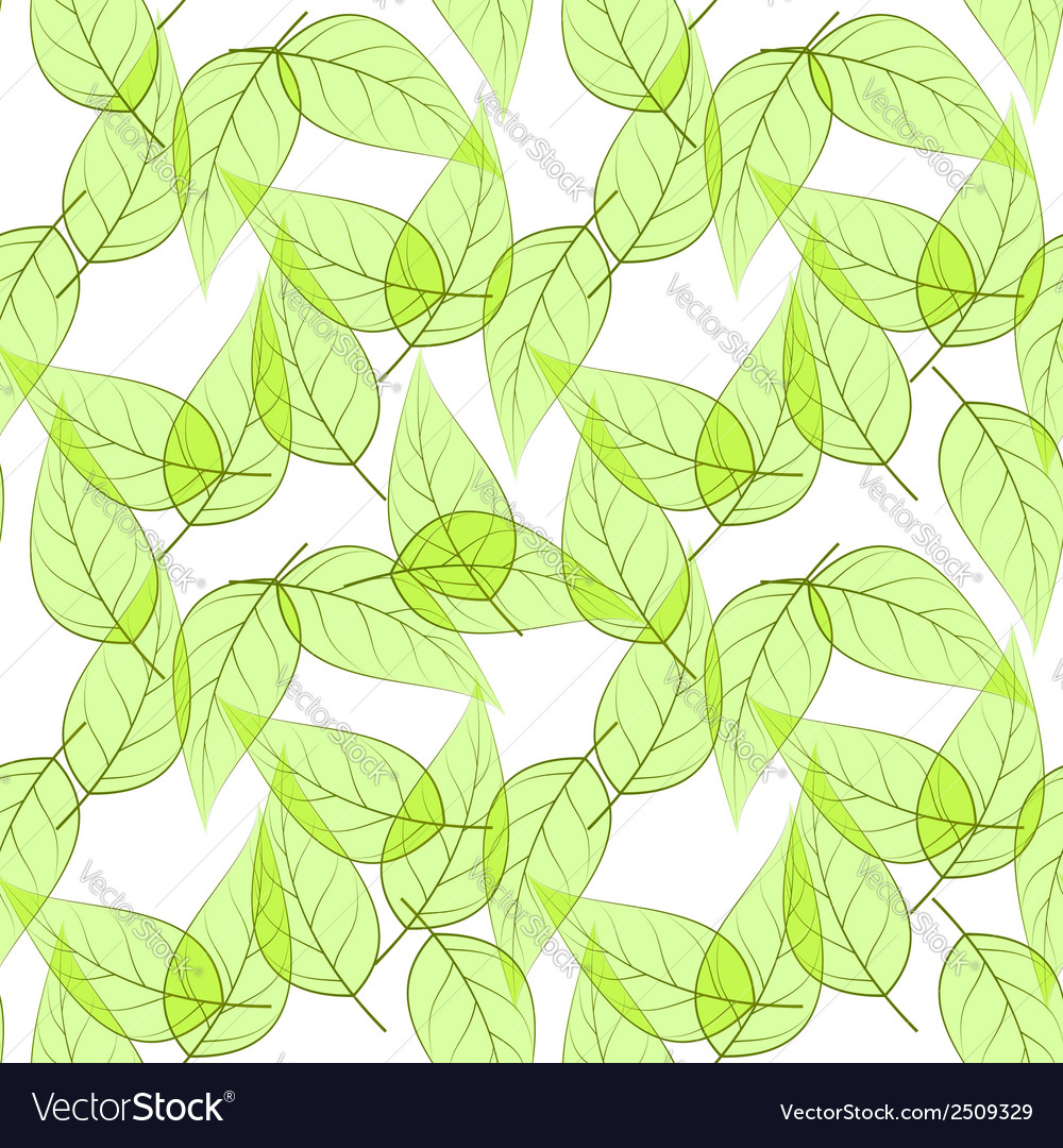 Seamless background made of transparent green leav vector | Price: 1 Credit (USD $1)