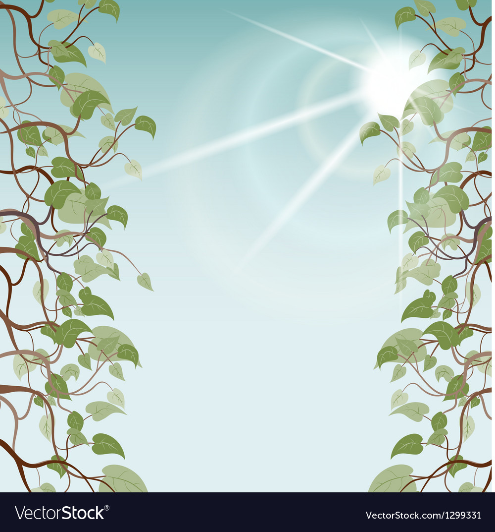 Leafs in sun rays eps10 vector | Price: 1 Credit (USD $1)