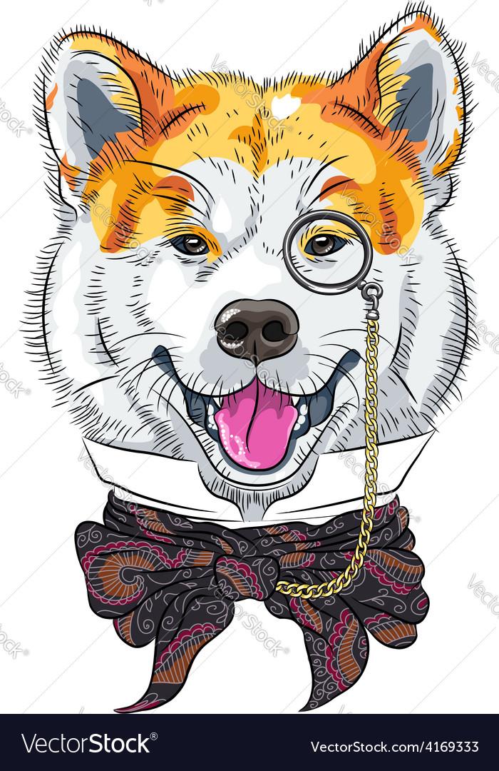 Funny cartoon hipster dog akita inu vector   Price: 3 Credit (USD $3)