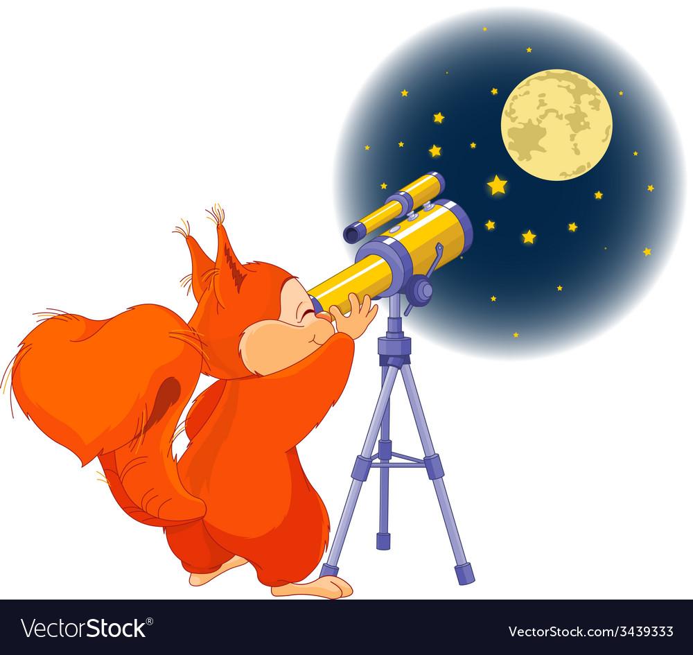 Squirrel astronomer vector | Price: 1 Credit (USD $1)