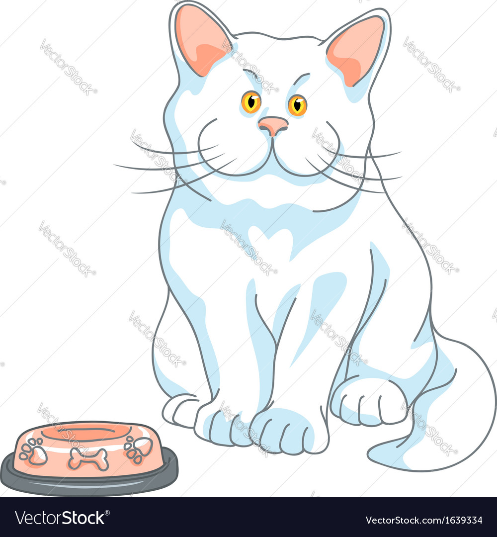 Cute white cat with yellow eyes and empty bowl vector   Price: 1 Credit (USD $1)