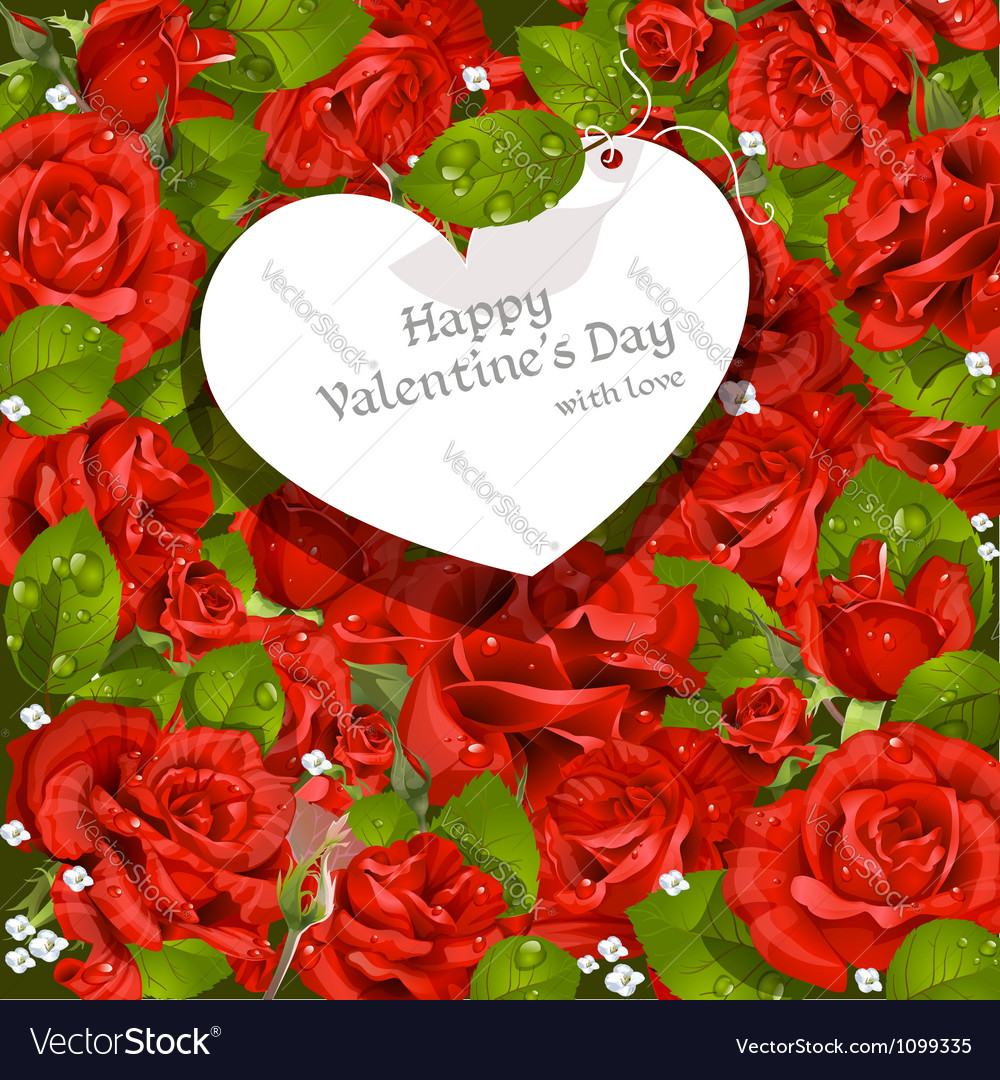 Valentines day card red roses background vector | Price: 1 Credit (USD $1)