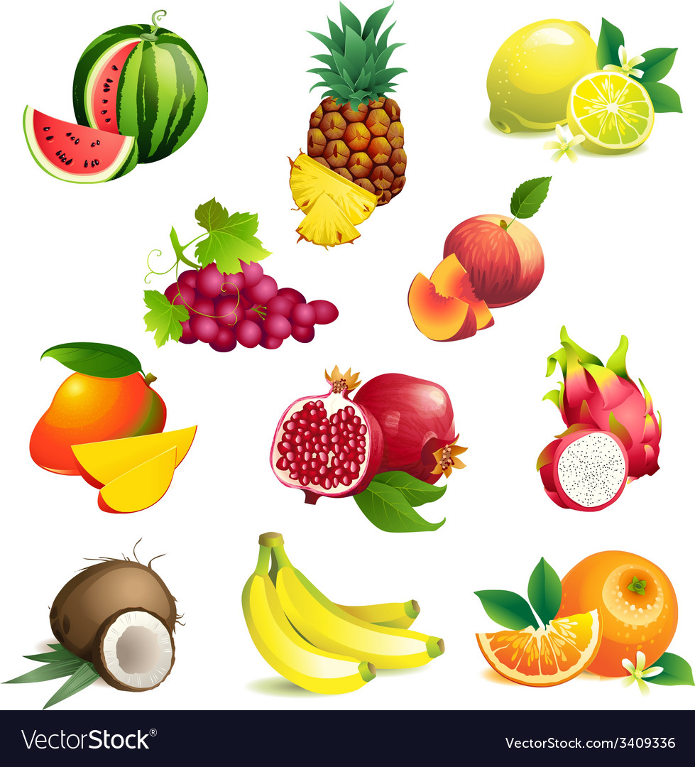 Set of tropical fruits with leaves and flowers vector | Price: 1 Credit (USD $1)