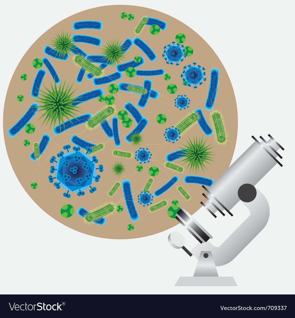 Microbes and microscope vector | Price: 1 Credit (USD $1)
