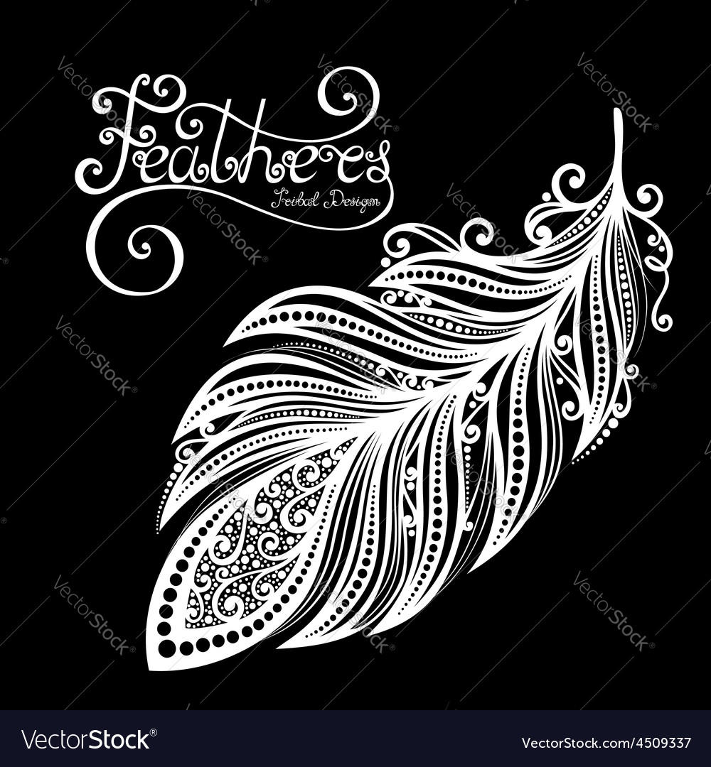 Peerless decorative feather vector | Price: 1 Credit (USD $1)