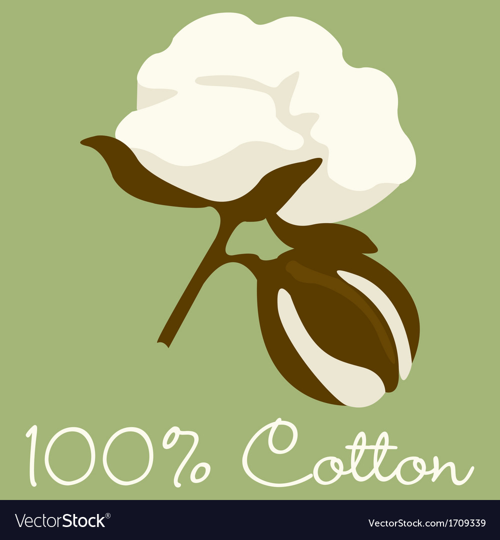 100 cotton sign in format vector | Price: 3 Credit (USD $3)