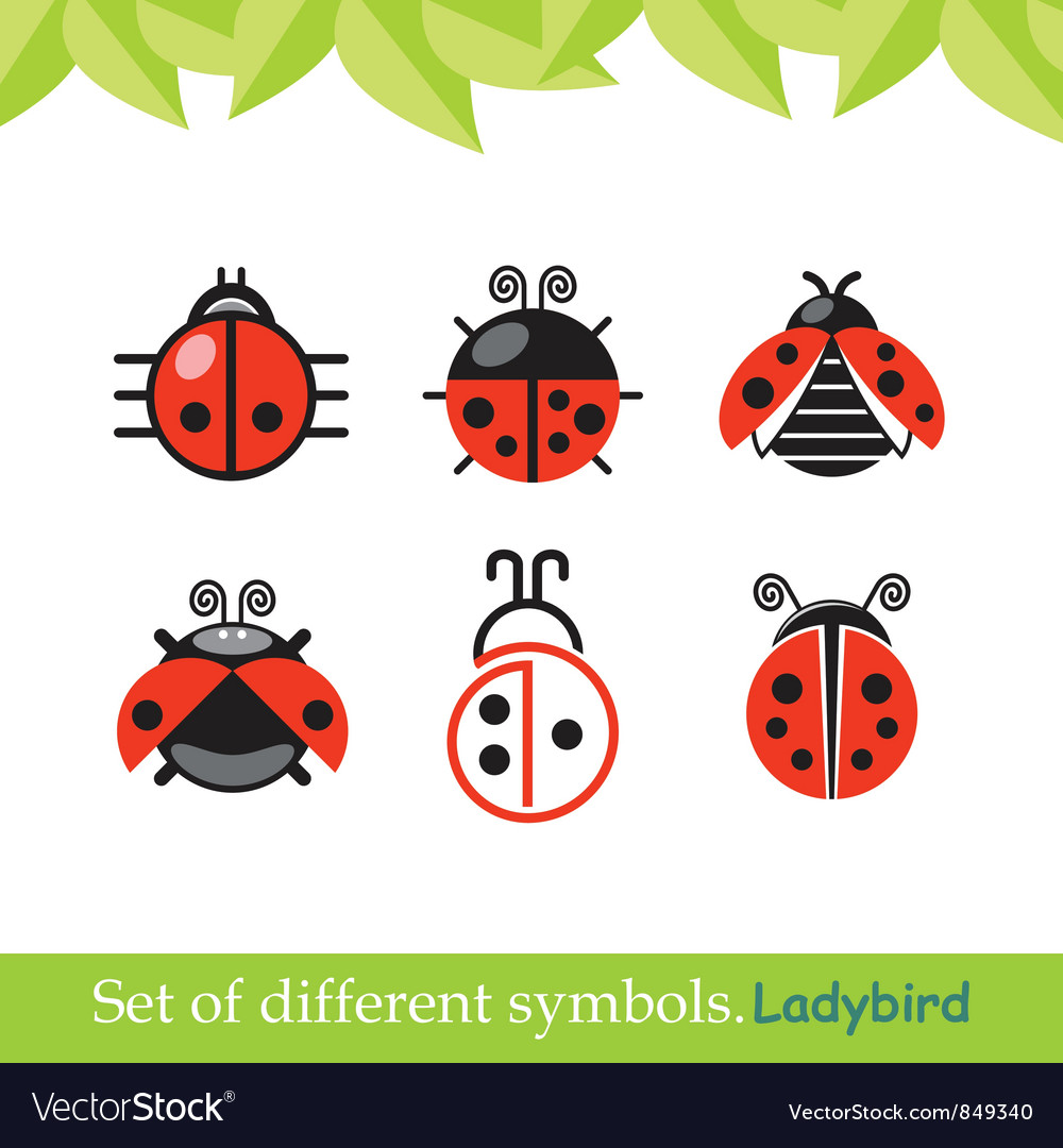 Ladybird ladybug set of symbols vector | Price: 1 Credit (USD $1)
