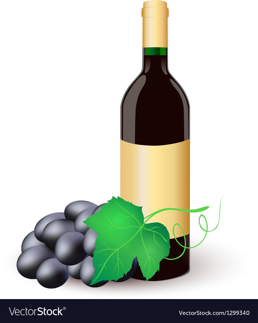 Wine bottle with black grapes vector | Price: 1 Credit (USD $1)