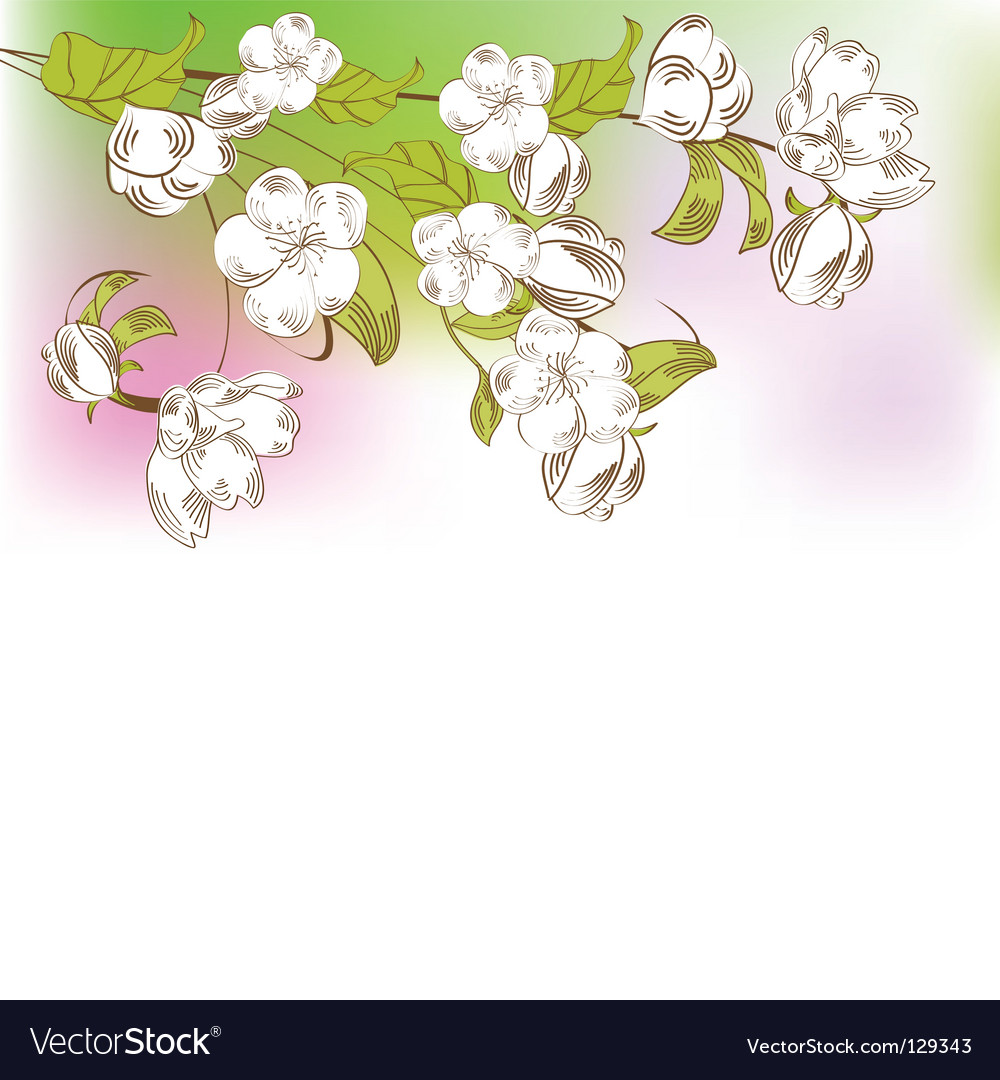 Spring tree branch vector | Price: 1 Credit (USD $1)