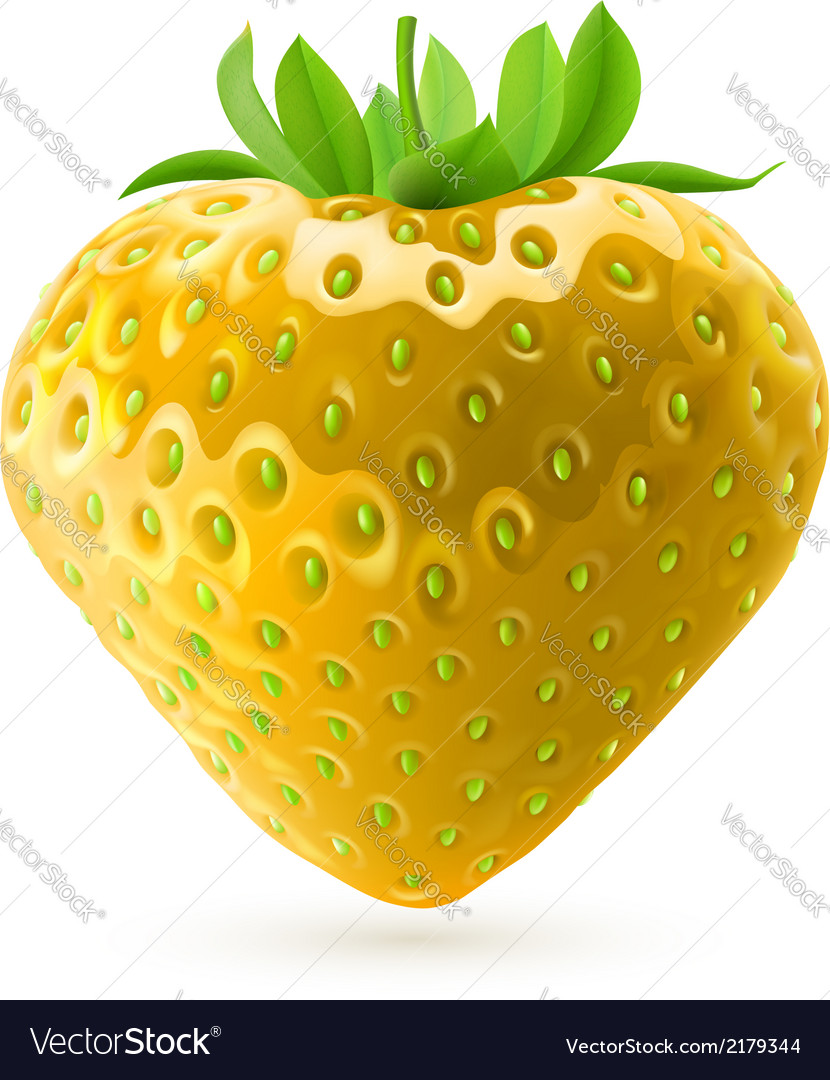Yellow strawberry vector | Price: 1 Credit (USD $1)