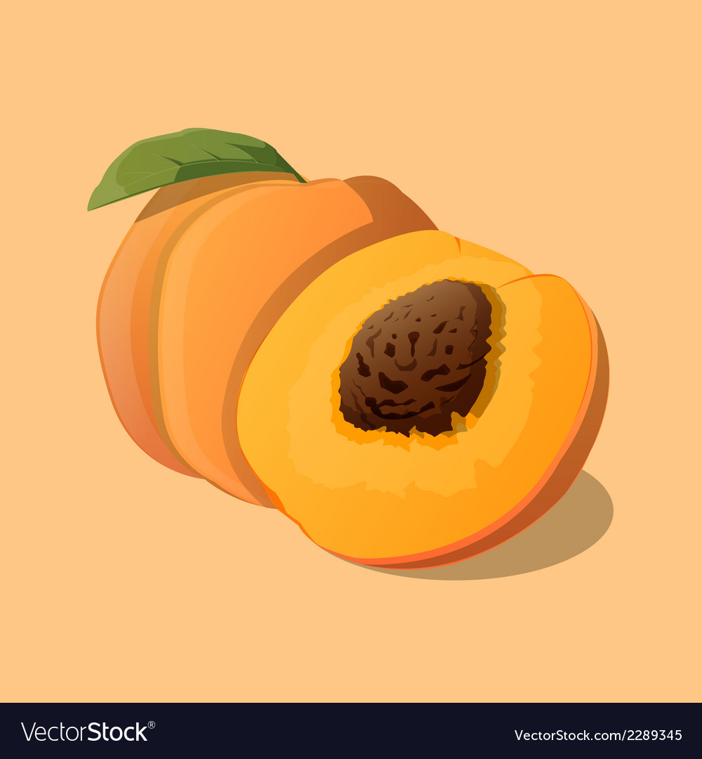 Peach with leaf vector | Price: 1 Credit (USD $1)