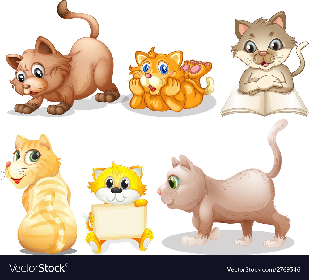 Cat set vector | Price: 3 Credit (USD $3)