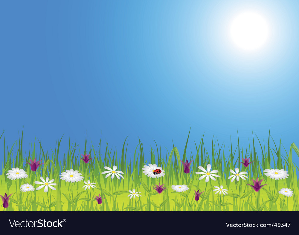 Spring meadow with flowers vector | Price: 1 Credit (USD $1)