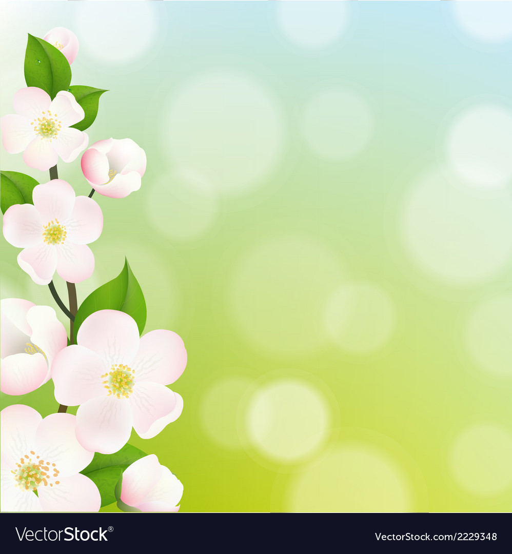 Pastel apple tree flowers frame vector | Price: 1 Credit (USD $1)