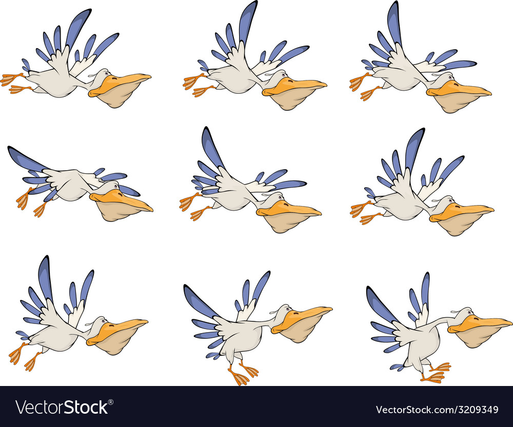 A set of pelicans storyboards vector | Price: 1 Credit (USD $1)