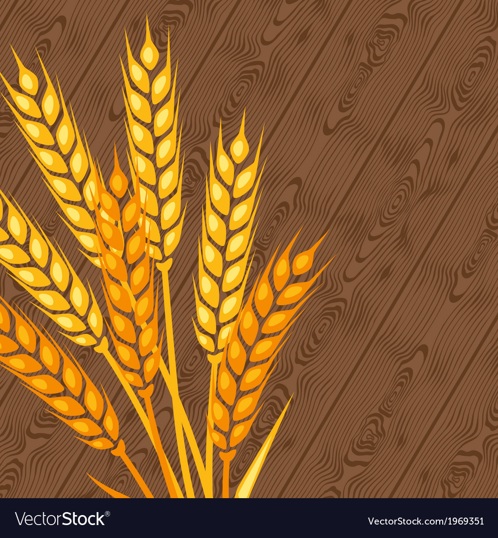 Background with ears of wheat vector   Price: 1 Credit (USD $1)