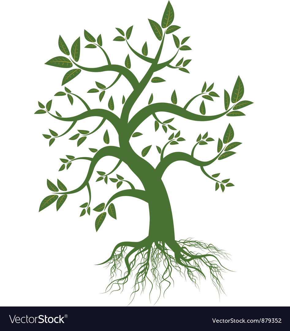Tree with green leaves vector | Price: 1 Credit (USD $1)