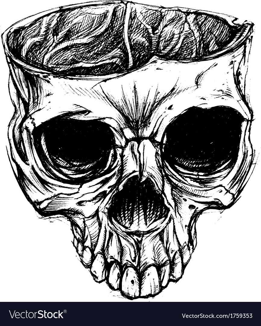 Skull drawing vector | Price: 1 Credit (USD $1)