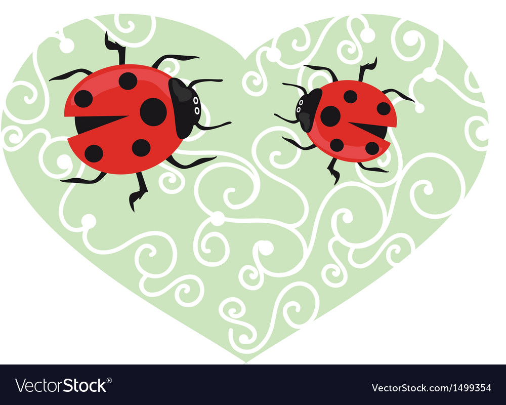 Ladybird on the green grass vector | Price: 1 Credit (USD $1)