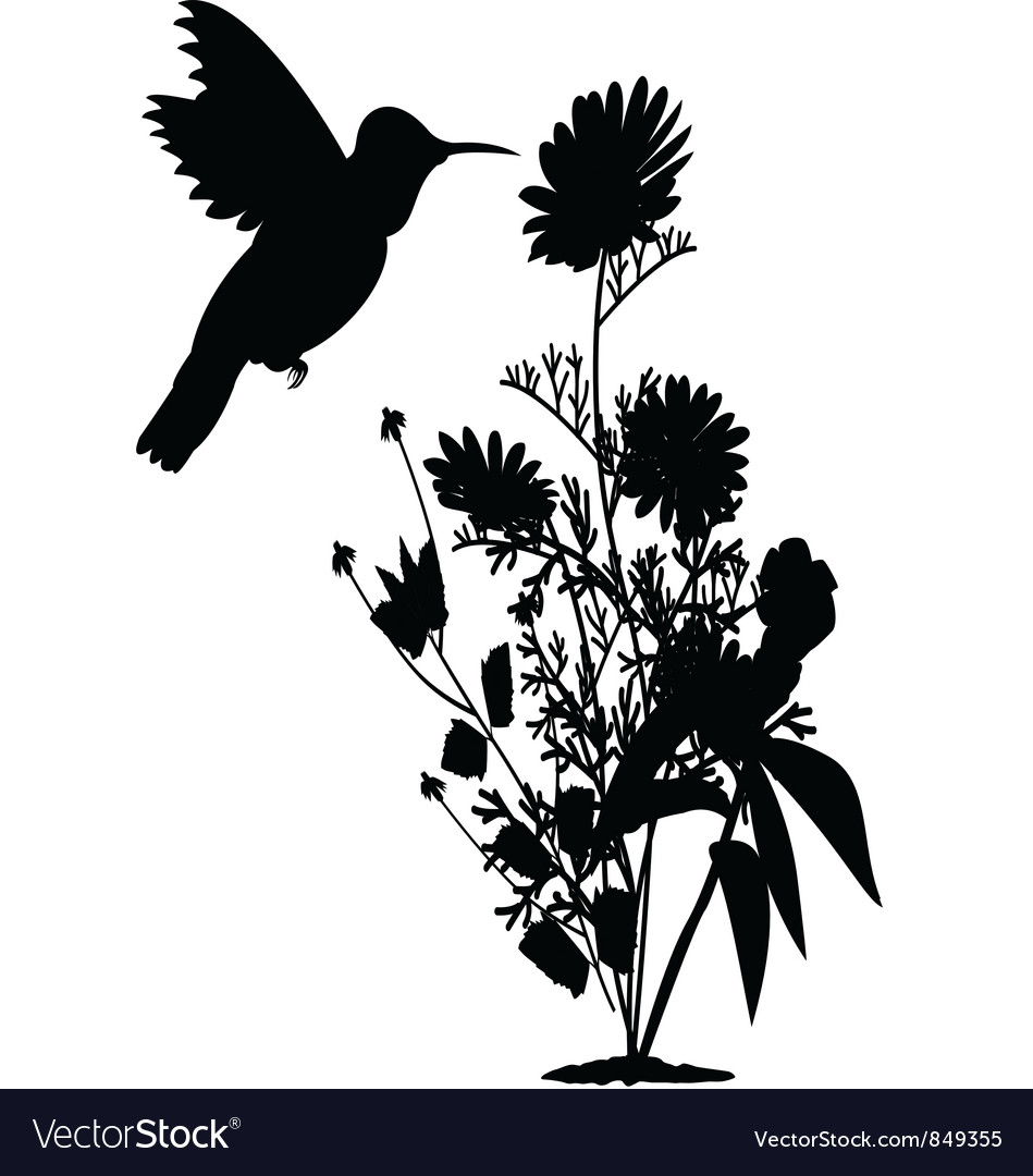 Hummingbird and tree vector | Price: 1 Credit (USD $1)