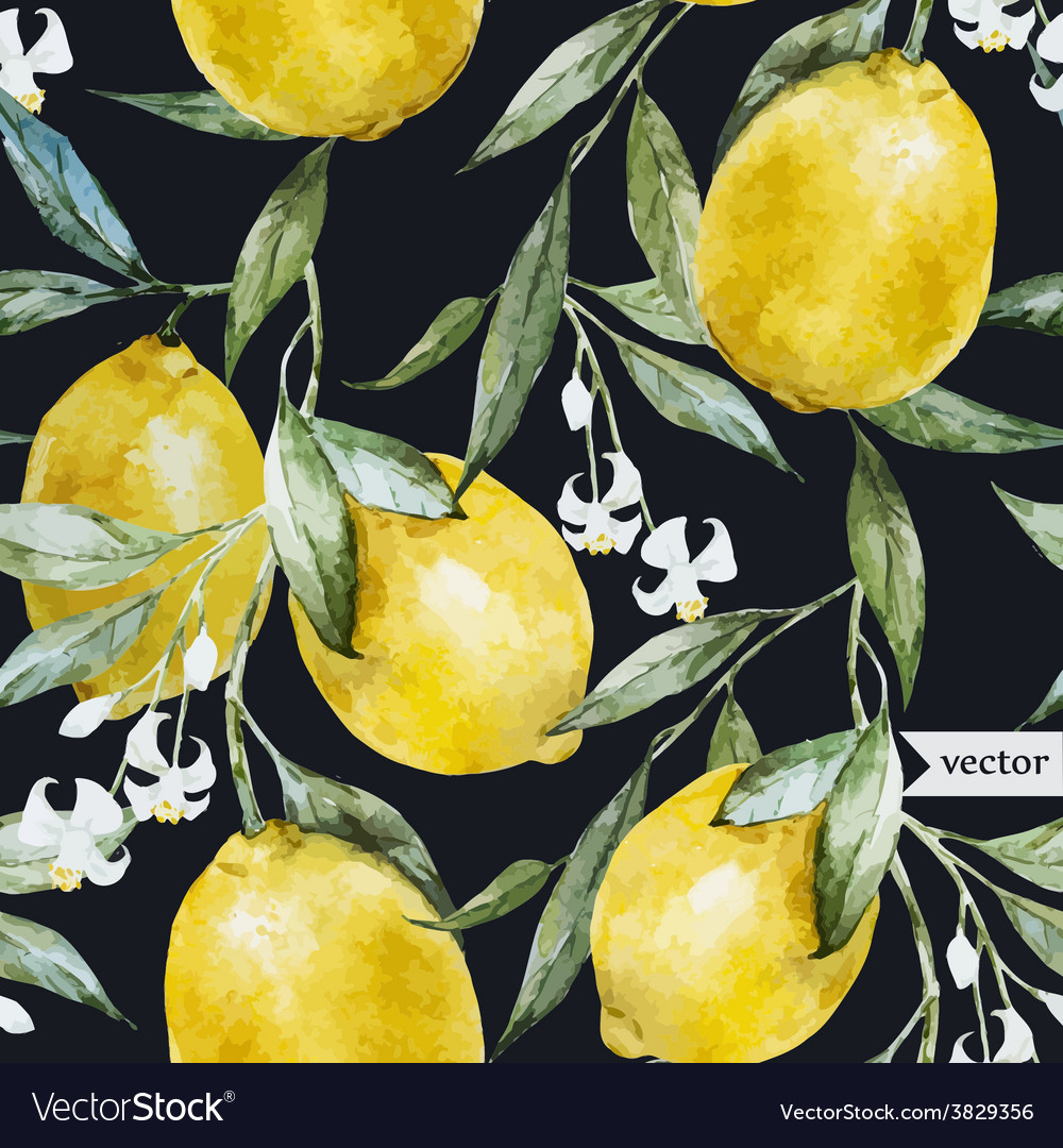 Lemon pattern8 vector | Price: 1 Credit (USD $1)