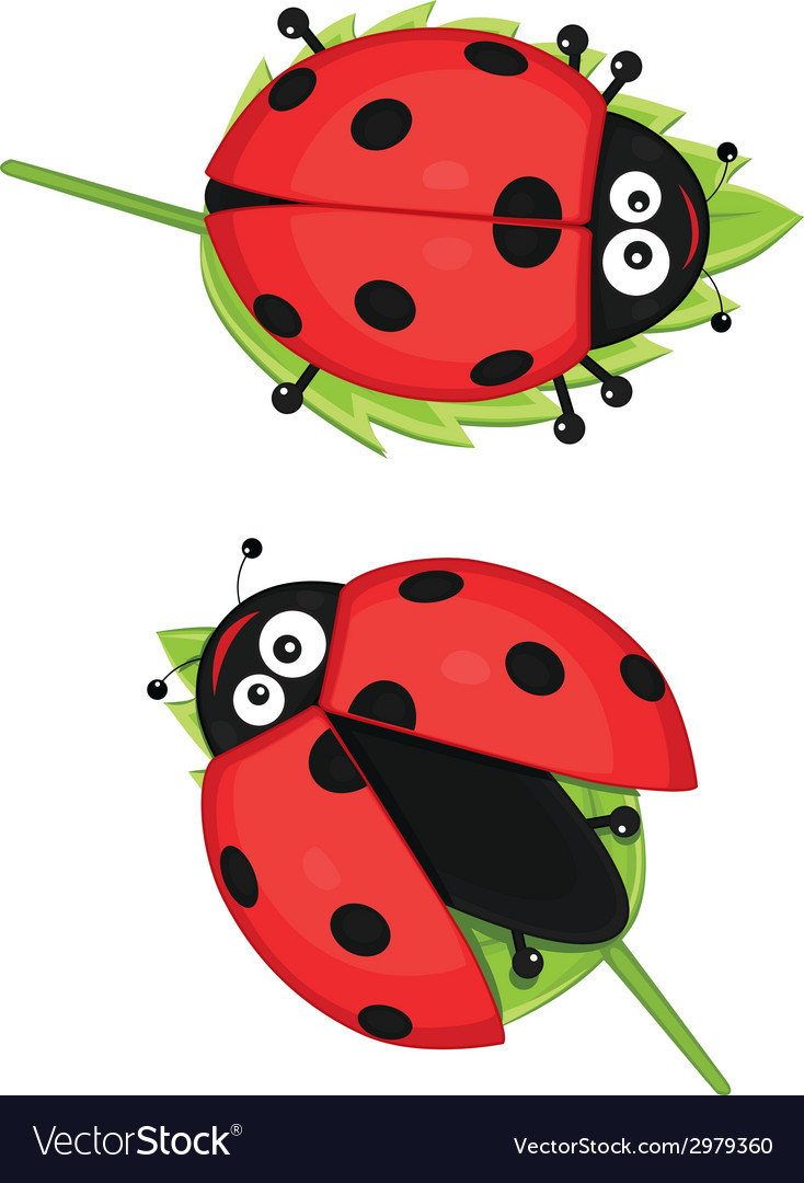 Cute ladybug vector | Price: 1 Credit (USD $1)