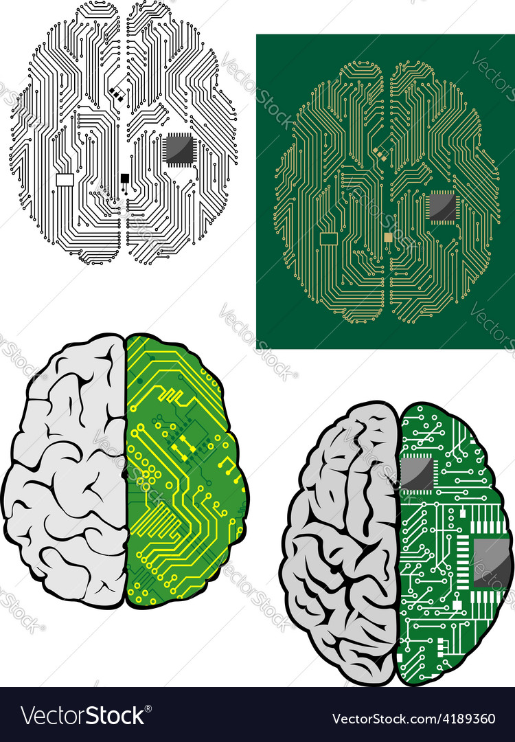 Human brain with computer motherboard vector | Price: 1 Credit (USD $1)