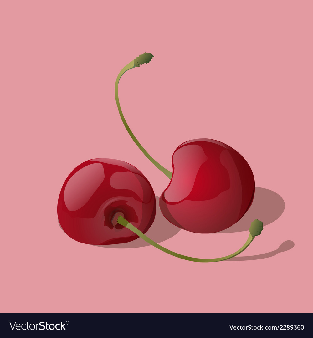 Ripe red cherry berries vector | Price: 1 Credit (USD $1)
