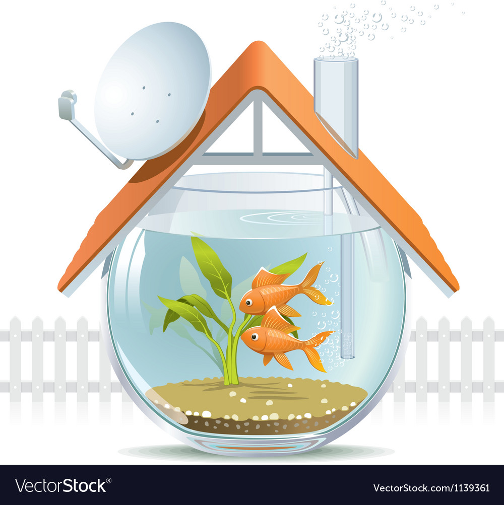 Aquarium home vector | Price: 5 Credit (USD $5)