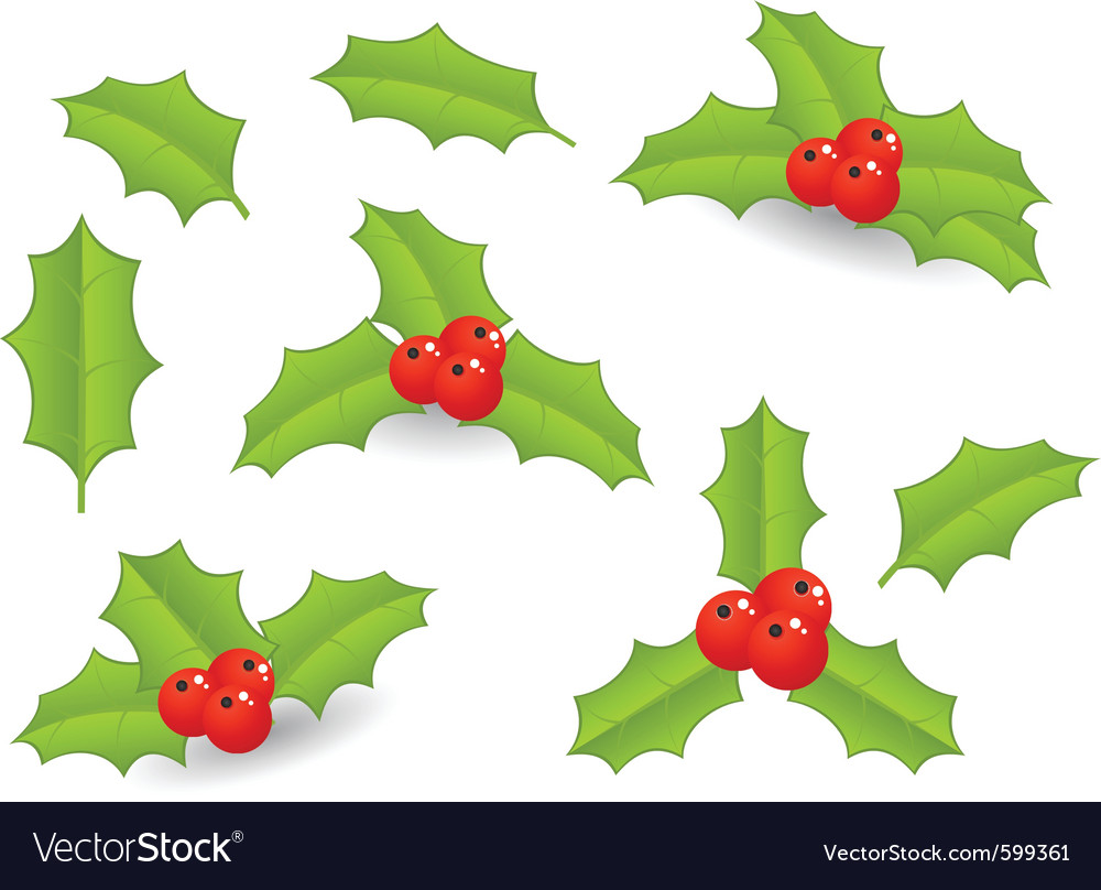 Christmas berries vector | Price: 1 Credit (USD $1)