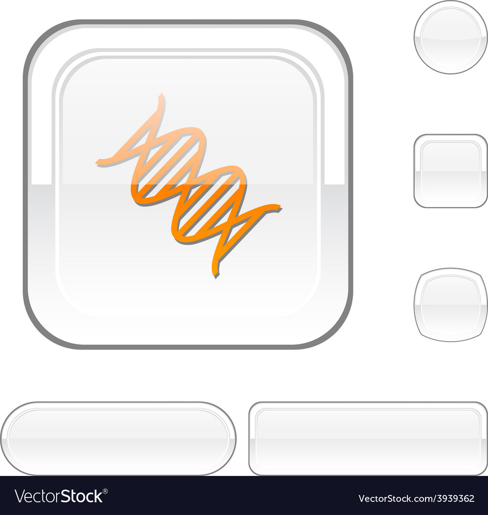 Dna white button vector | Price: 1 Credit (USD $1)