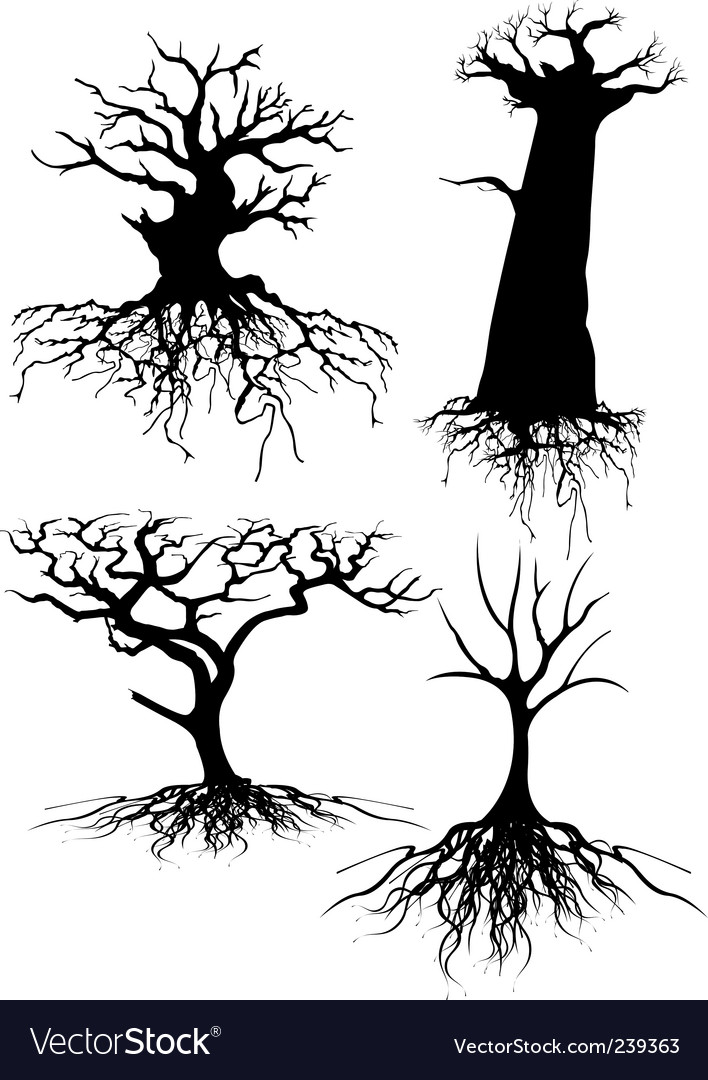 Four different old tree silhou vector | Price: 1 Credit (USD $1)