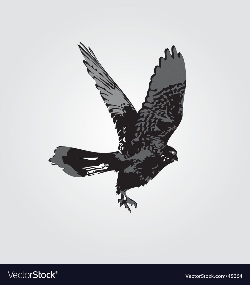 Hawk silhouette vector | Price: 1 Credit (USD $1)