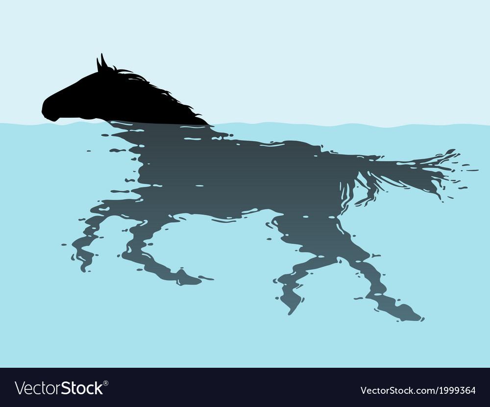 Swimming horse vector | Price: 1 Credit (USD $1)